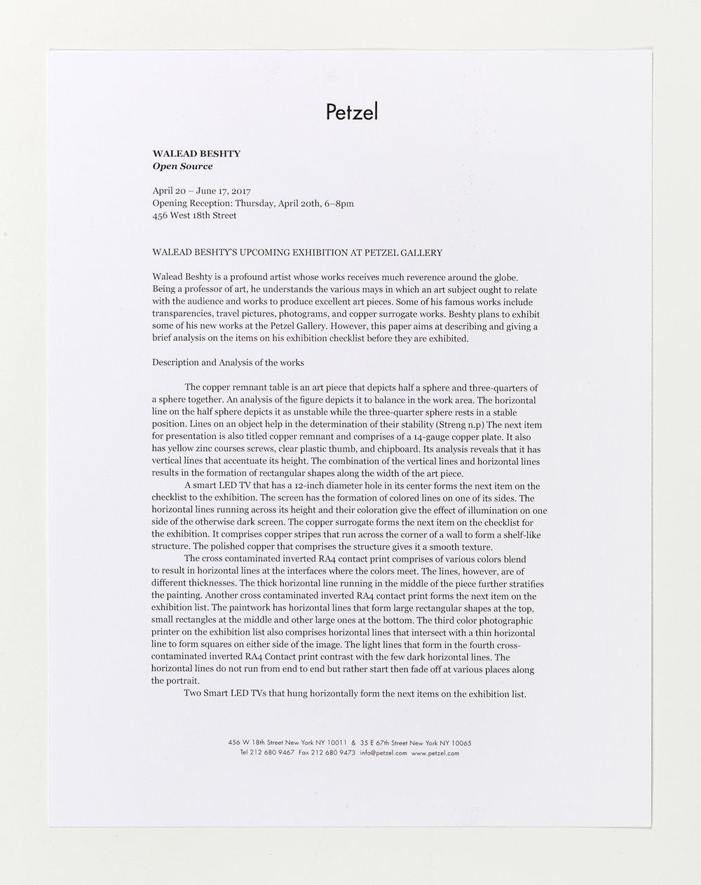Open Source press release   Petzel Gallery  New York  New York  2017