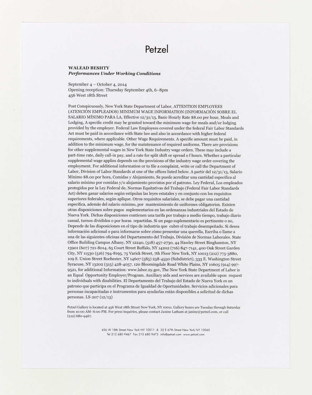 Performances Under Working Conditions press release   Petzel  New York  New York  2014