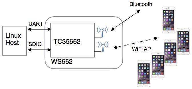 WZ662