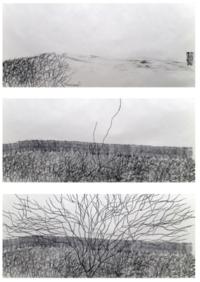Kakyoung Lee .  Walk-2009.  2009. Still from Moving Image (Graphite on Paper). Courtesy of the Artist and The Drawing Center.