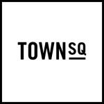 TS logo white.jpg