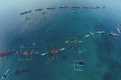 A flotilla of outriggers full of whale shark tourists - film still for On the Brink: Uncharted Waters