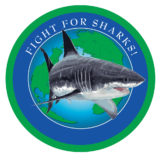 sharkstewards.png