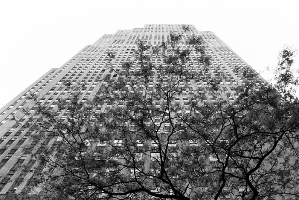 NYC-070.jpg