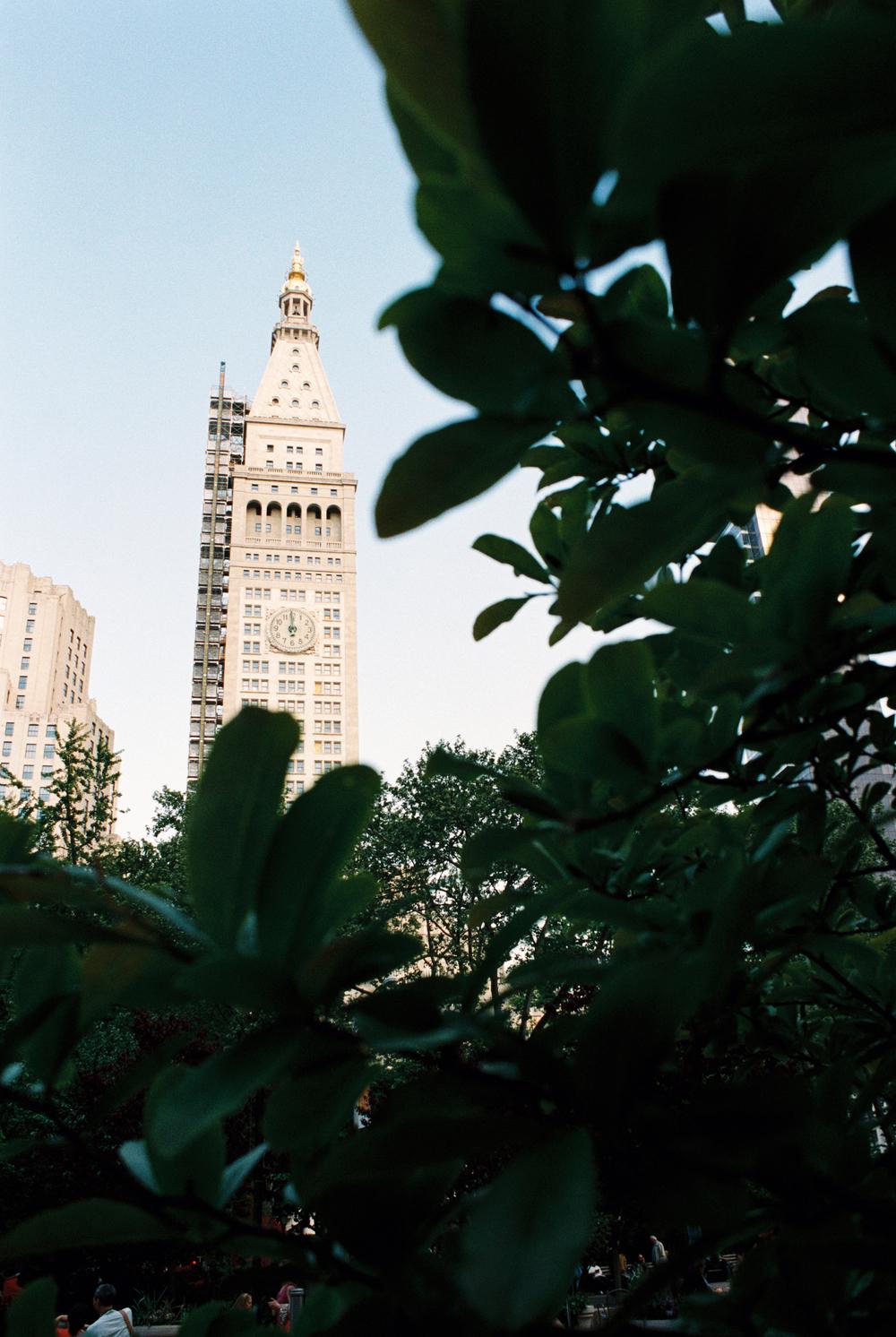 NYC--5.jpg