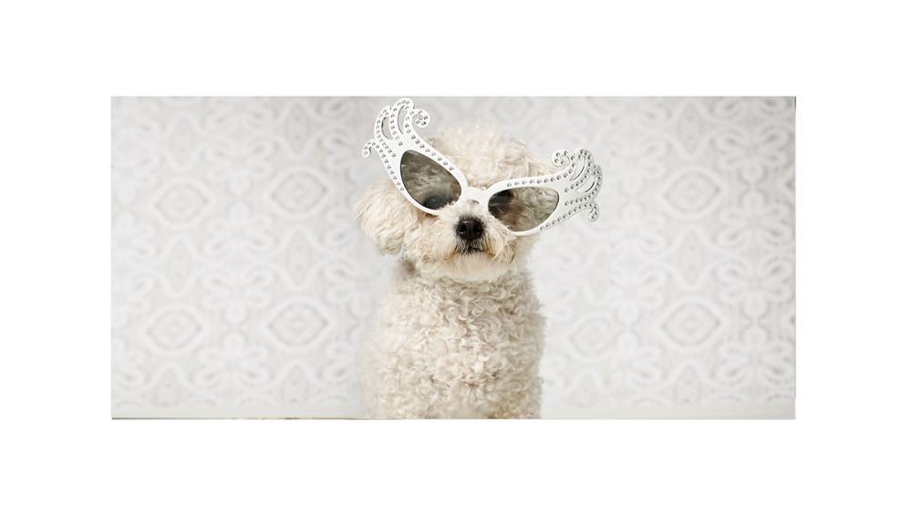 Home-glasses.jpg