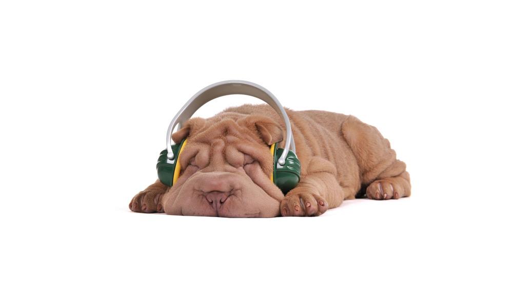 Home-Headphones.jpg