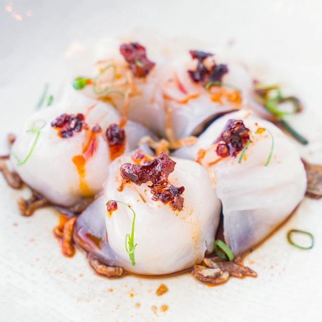 Wednesdays are for $1 dumplings and cheeky midweek drinks! #middlebar #middlebarsyd #sydneybars #taylorsquare