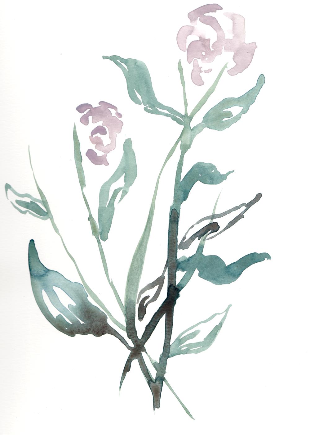 flowerIII.png