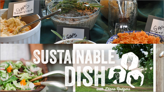 SUSTAINABLE DISH  REVIEW