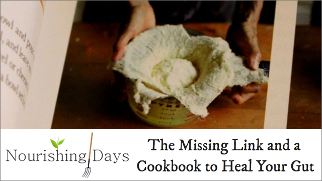 NOURISHING DAYS ARTICLE