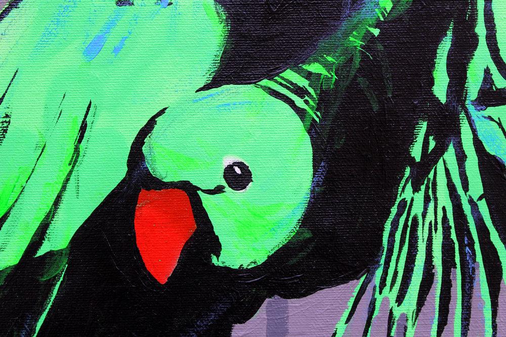 london-parakeet-painting-daniel-battams_3090-1200w.jpg