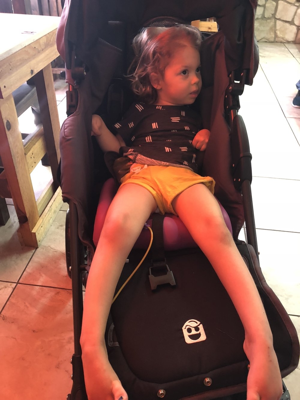 Berk in new stroller from Holton's Heroes
