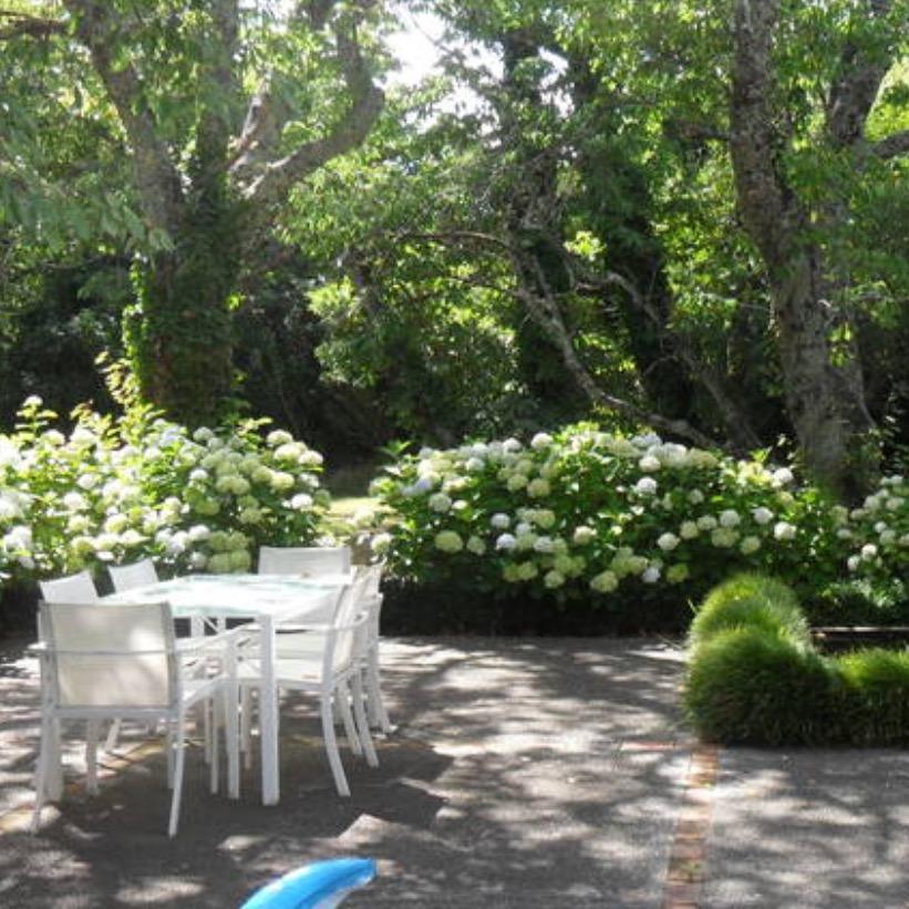new-zealand-garden