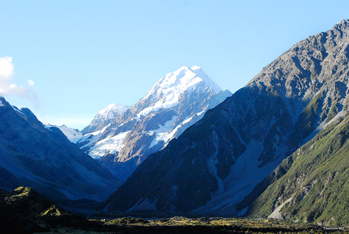The Southern Alps rising from the dense valley floor. Image courtesy of Tourism New Zealand.