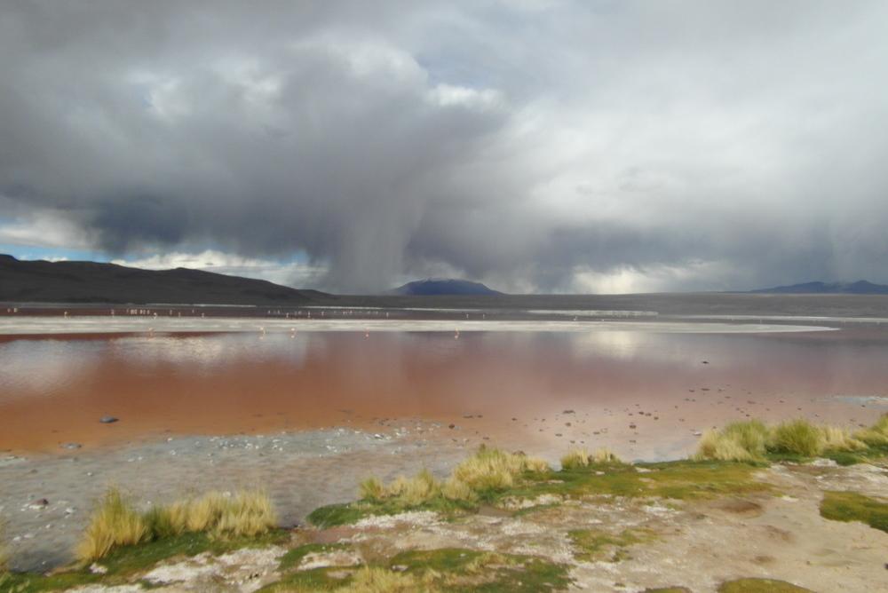@ Bolivia, 2013