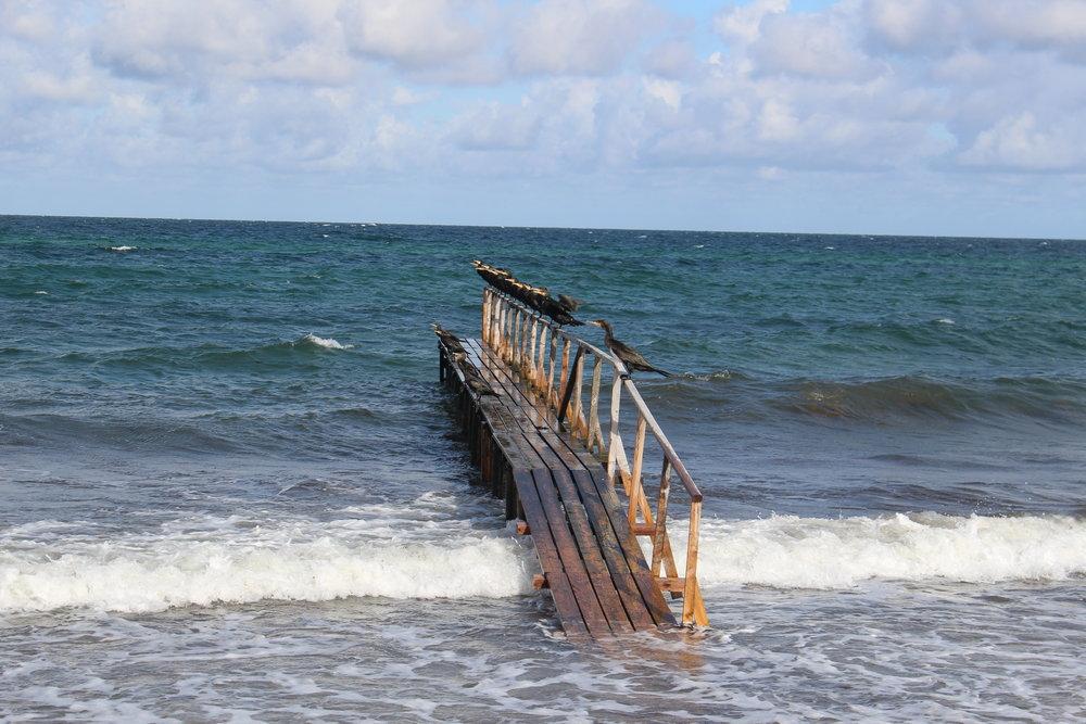 @ La mer au Danemark... et un pont!