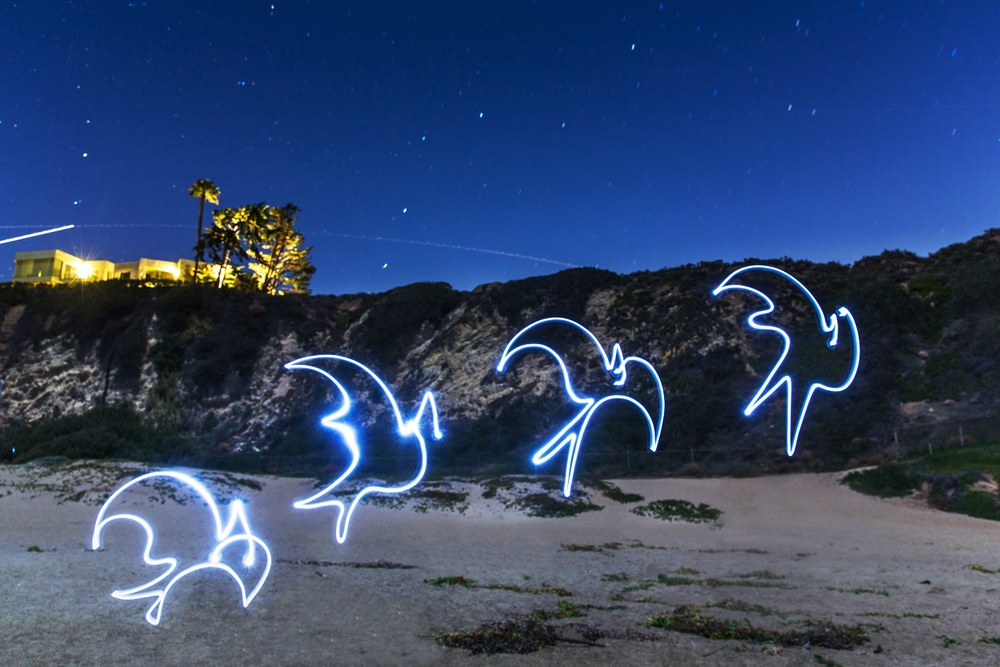 """Birds taking flight""   Light Photograph - Metal Print, Medium gloss    61 x 41 cm   Limited edition of 5   2016"