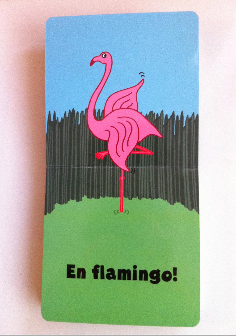 flamingo_b.jpg