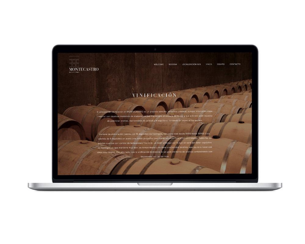 montaje web montecastro II.jpg