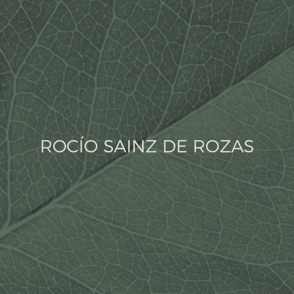 rsr10.jpg