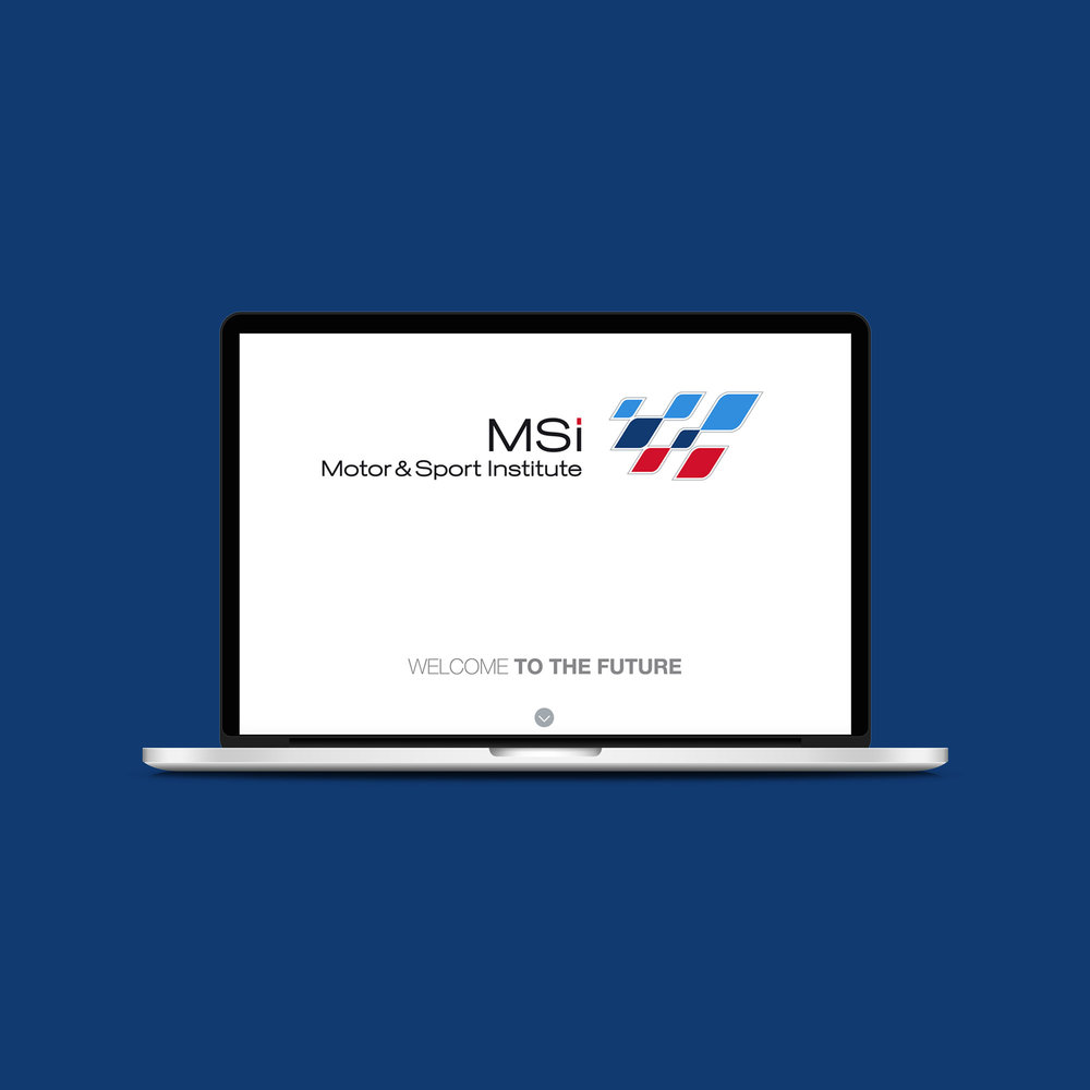 msi3(1).jpg