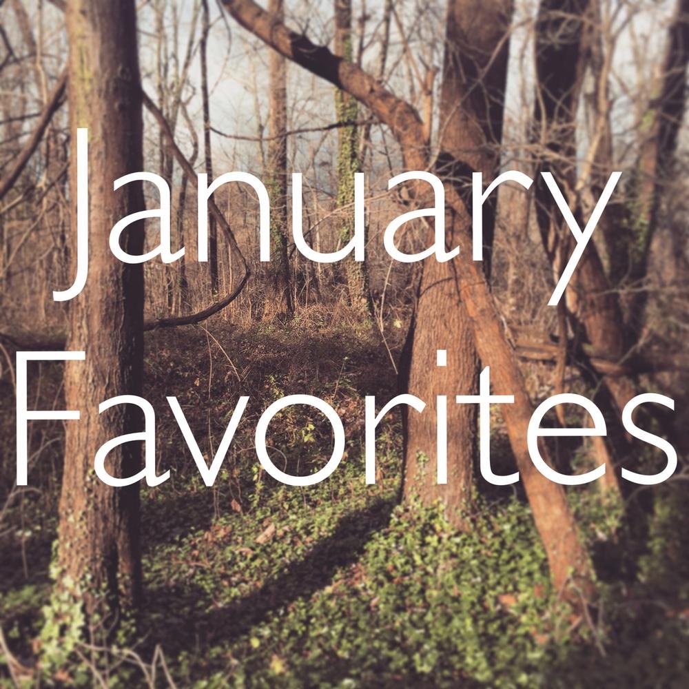 JanuaryFavorites.jpg
