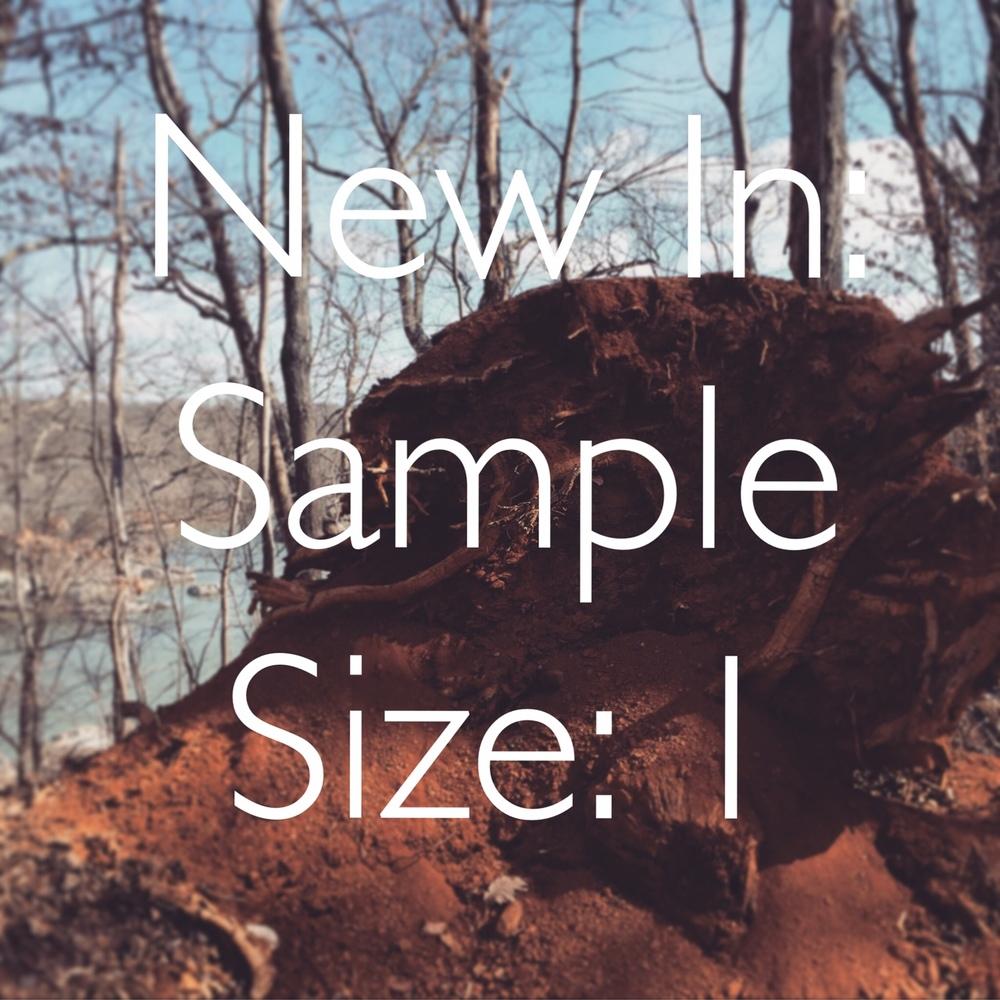 SampleSize1.jpg