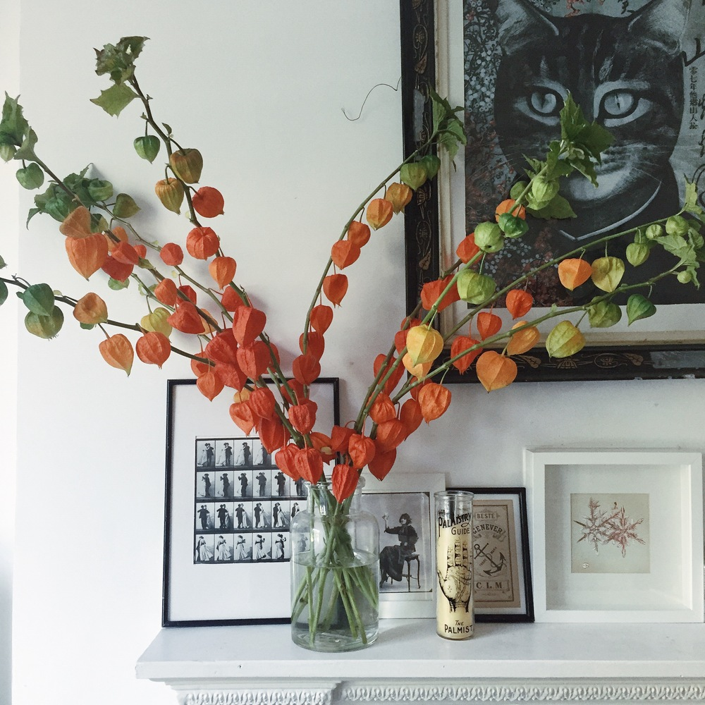 Styling the seasons - Autumnal Chinese lanterns