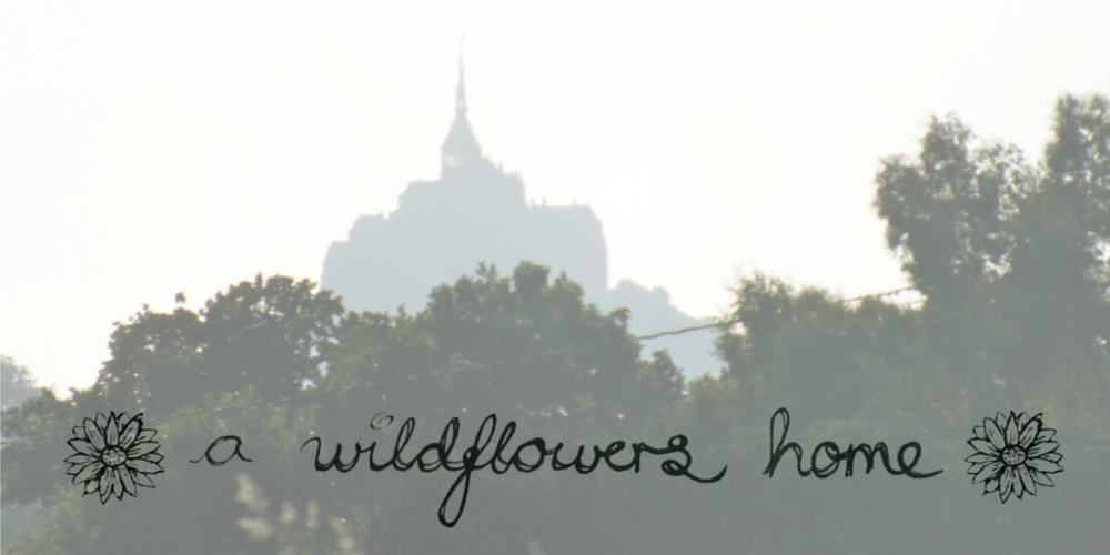 A Wildflowers Home // Header // Journal // Blog