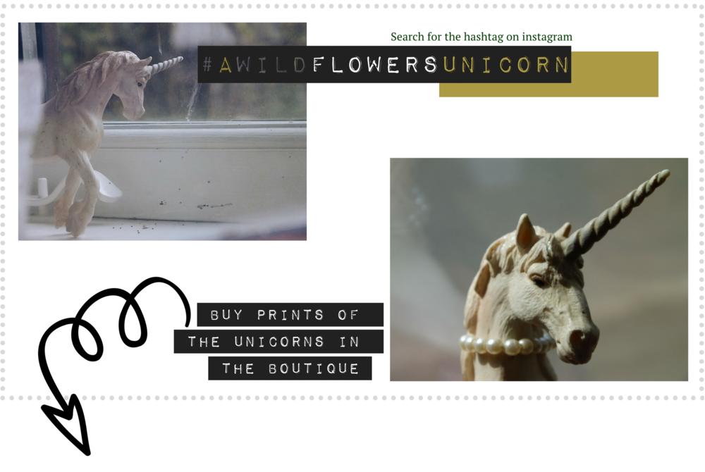 A Wildflowers Home / Homepage / #awildflowersunicorn