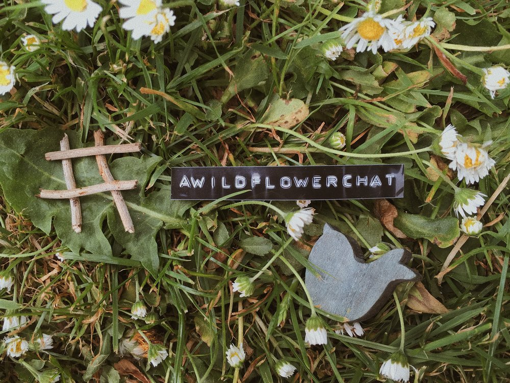 A Wildflowers Home // #awildflowerchat // twitter chat