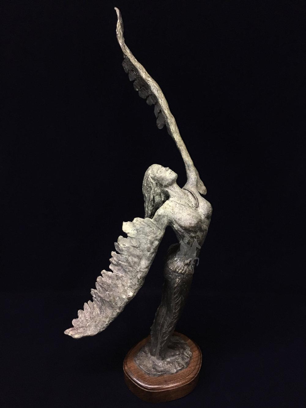 Raven-JerryVaughn-1.jpg
