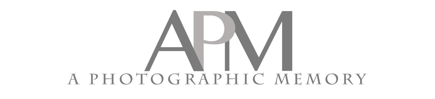 A Photographic Memory - Wedding & Portrait Photographers