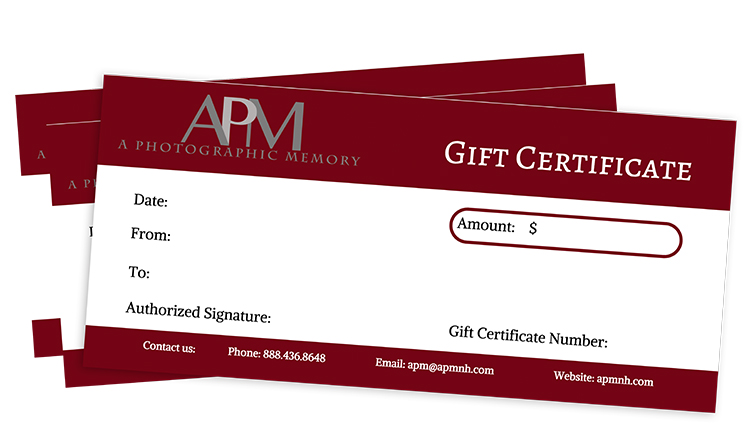 gift certificates a photographic memory wedding portrait