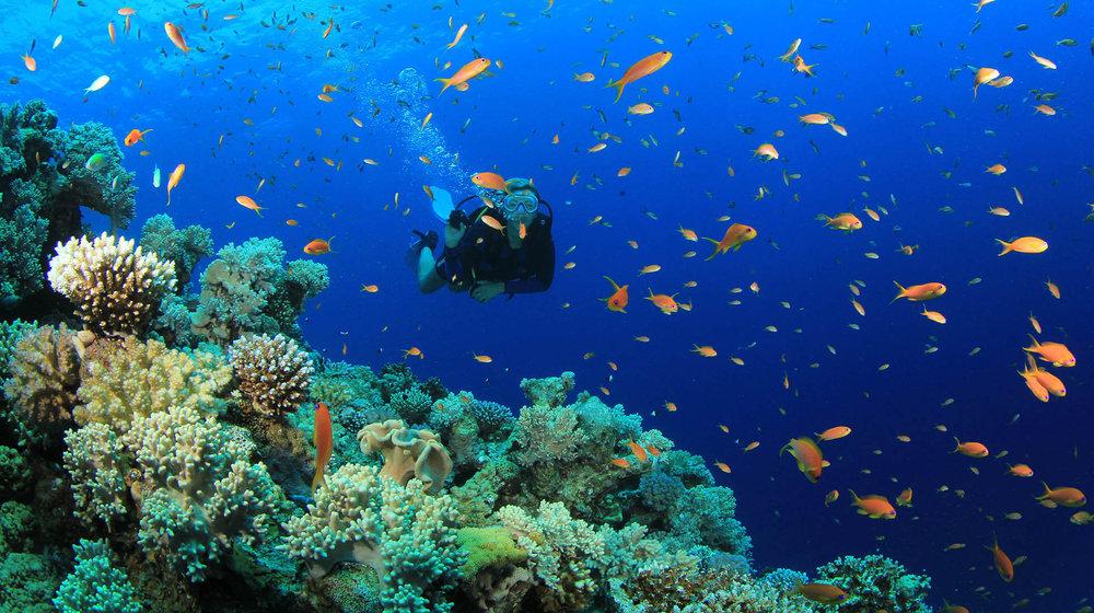 Scuba-diving-Oludeniz-Turkey.jpg