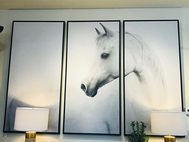 No horsin' around...things are moving fast with only 4 days left- our 50% OFF sale continues!  Saturday hours: 10-2 Monday-Wednesday: 10-5