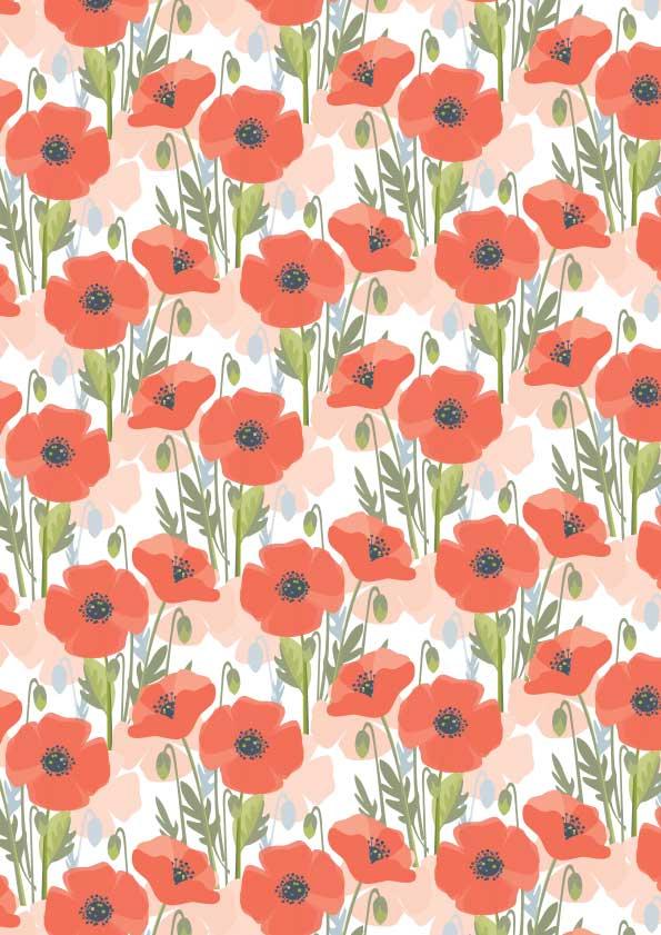 KH089_Poppy-2.jpg