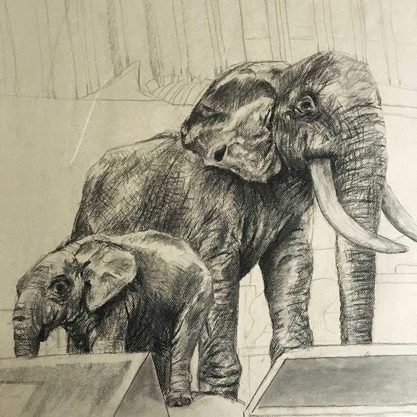KH_Elephants.jpg