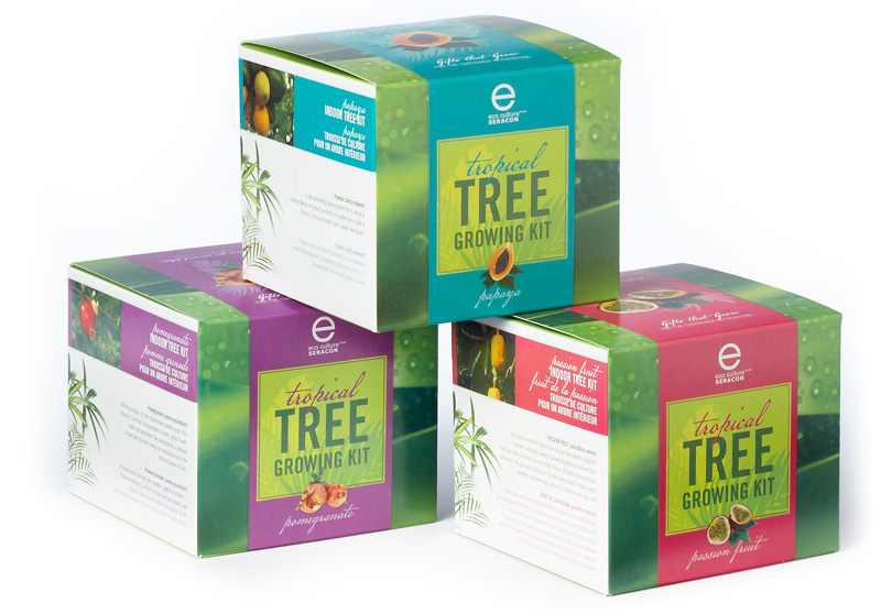 tropical-tree-growing-kit