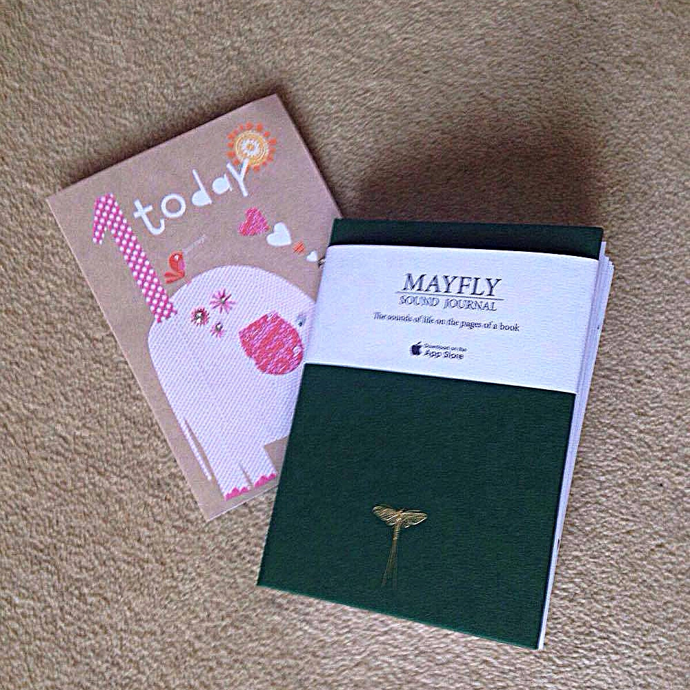 As A Gift For Her First Birthday I Gave Parents Mayfly To Record The Sounds And Fill Pages Of Journal With Photos Their Daughters
