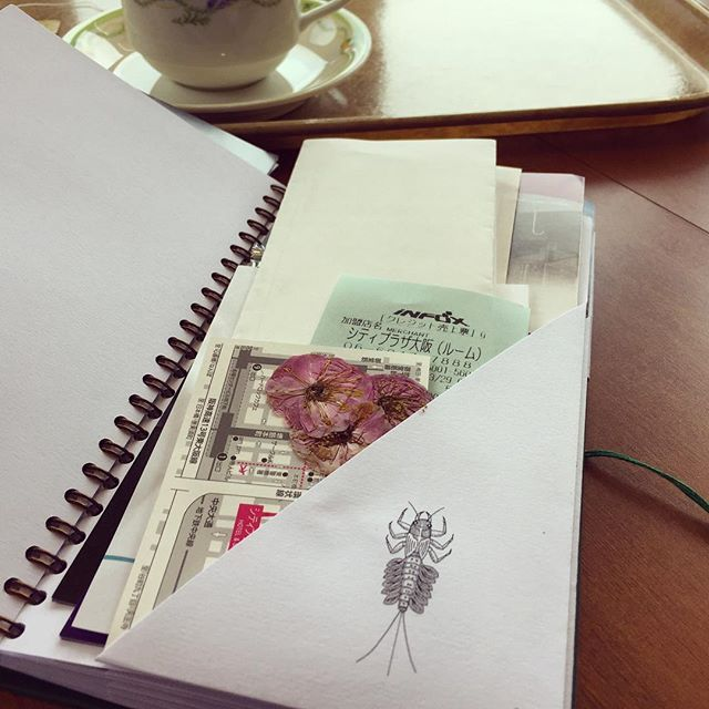 Mayfly pocket bursting with tickets, receipts and Japanese Cherry Blossom! #soundsofjapan #travel #cherryblossom #japan #journal