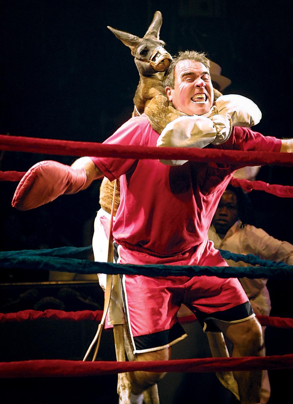 UniverSoul Circus kangaroo boxing