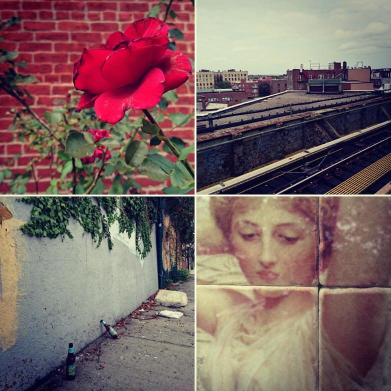 Strange beauty in Queens