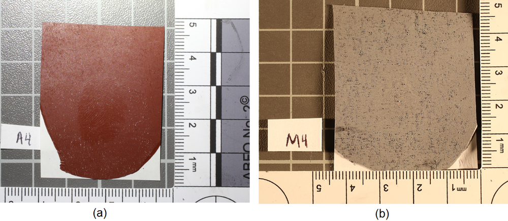 Figure 3 - Cast of bloody friction ridge impressions: (a) AccuTrans; (b) Mikrosil.