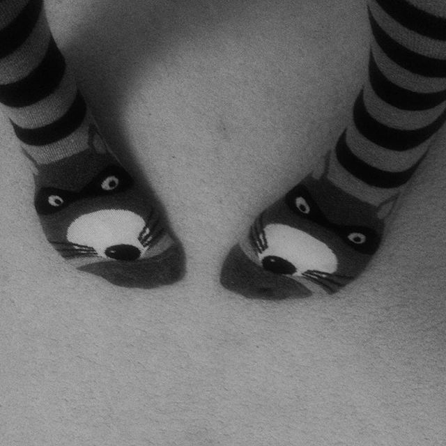 Hooray! Raccoon socks day ☔️ #NatureLinks #forestschools #rainyday #socksoftheday #britishweather #wildtime #getoutsideandplay