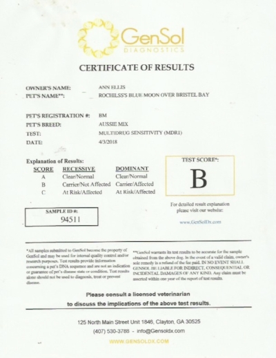 Bristol tests-1 1.jpg