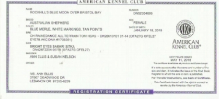 AKC Registration