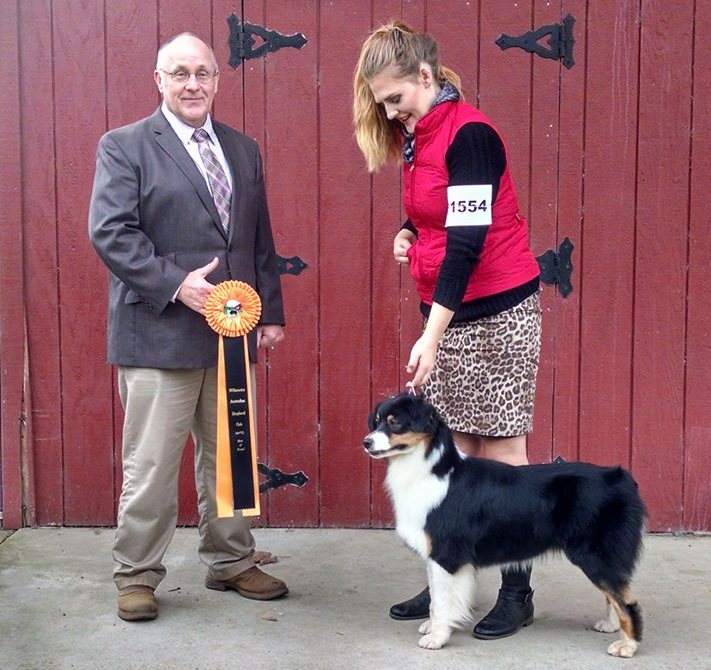 Best in Breed  - Scio 2017