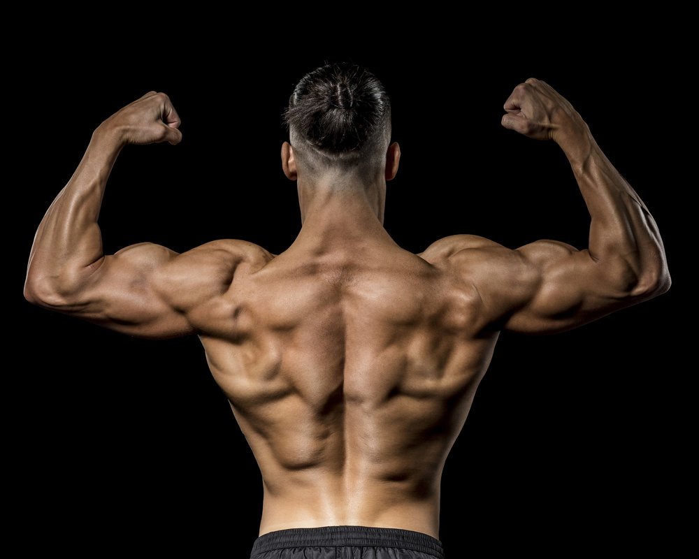 Back double bicep, this pose really shows off the back, shoulders and arms.